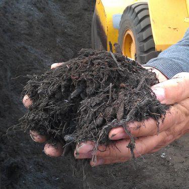 Soils-6